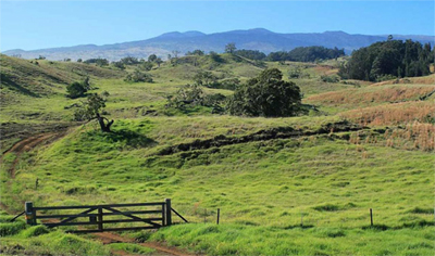 Kukaiau Ranch for sale on Hawaii Island