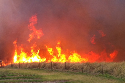 Brushfire in Pahala, by Hawaii County Fire Department