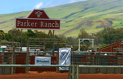 Parker Ranch plans to give large-scale grass-fed beef production a