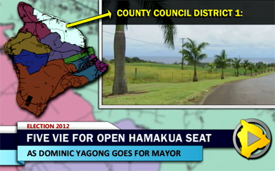 VIDEO: Hawaii County Council District 1 race