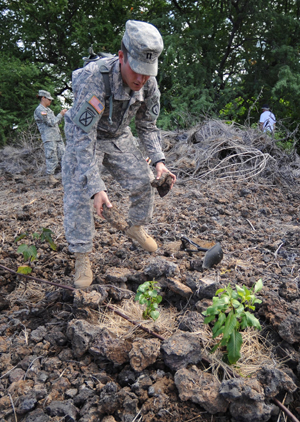 Soldiers from the Oahu-based 1st Battalion 21st Infantry join students from UH and other volunteers to plant native plants.