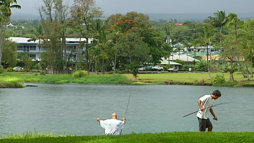 Video new rules considered for waiakea public fishing area for Public fishing areas