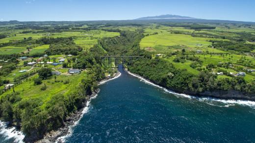 Hakalau Valley with Mauna Kea in the background, courtesy Beverly Molfino