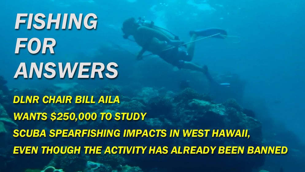 VIDEO: DLNR wants to study scuba spearfishing, after ban