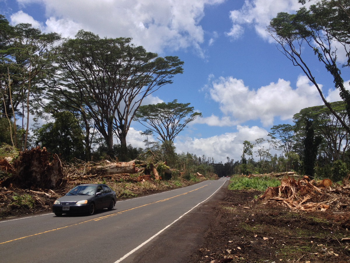 VIDEO: Puna Residents Marvel at Storm Altered Highway 132