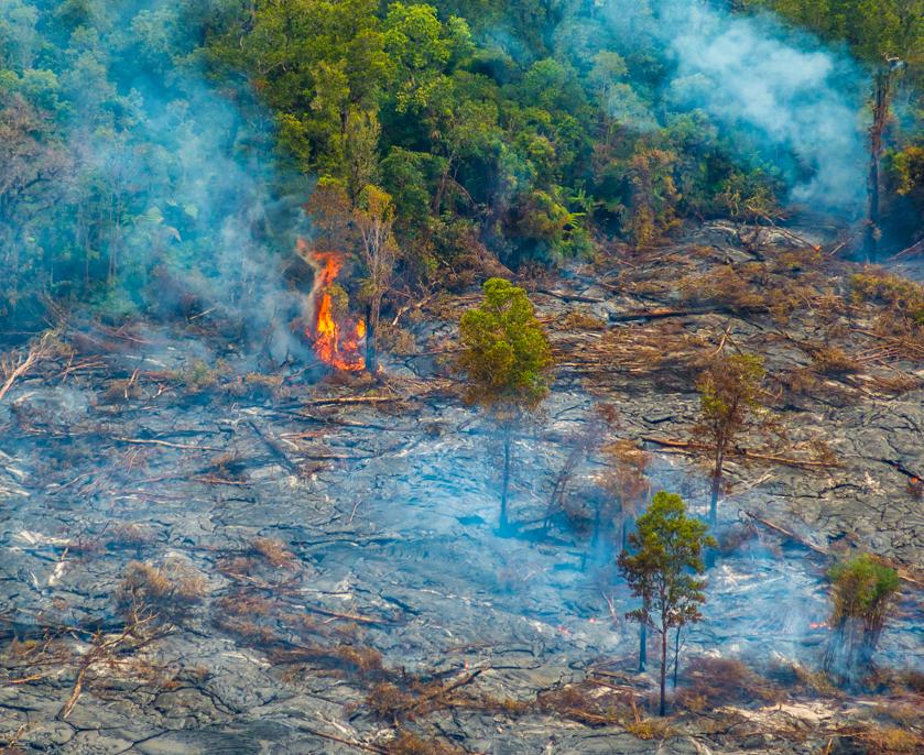 VIDEO: Morning Lava Flow Update – Monday, September 8