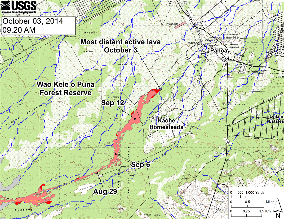 USGS HVO: This large-scale map shows the distal part of the June 27th flow in relation to nearby Puna communities. The black dots mark the flow front on specific dates. Small breakouts were scattered across the leading edge of the flow today. Lava continues to advance downslope and extended the front by about 270 m (295 yards) since our October 1, 2014 over flight. Several breakouts were also active along the margin of the flow upslope of the leading edge and midway along the length of the flow near where lava first entered the crack system. The blue lines show down-slope paths calculated from a 1983 digital elevation model (DEM; for calculation details, see http://pubs.usgs.gov/of/2007/1264/). Down-slope path analysis is based on the assumption that the DEM perfectly represents the earth's surface. DEMs, however, are not perfect, so the blue lines on this map indicate approximate flow path directions.
