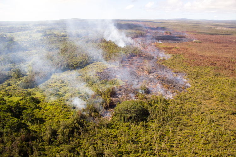 A closer view of the flow front courtesy USGS HVO, burning vegetation at its flow margin.