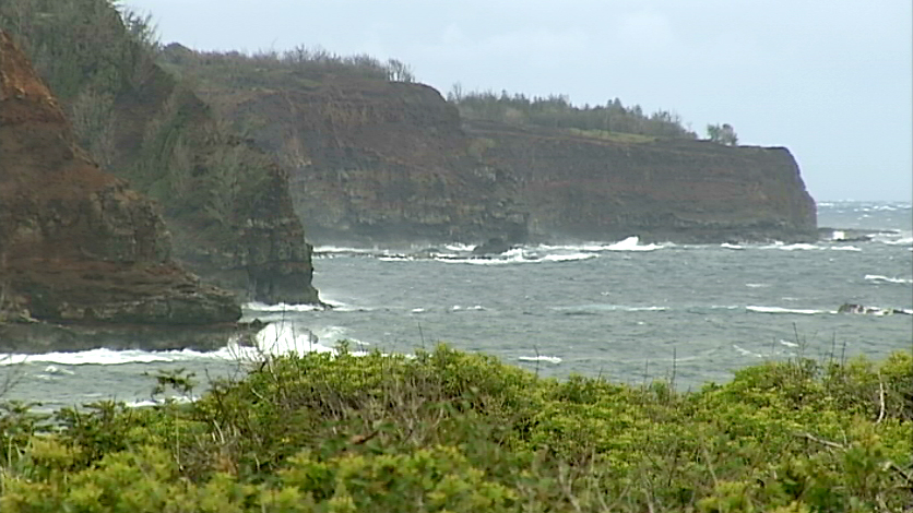 Shark Attack Reported Off North Kohala