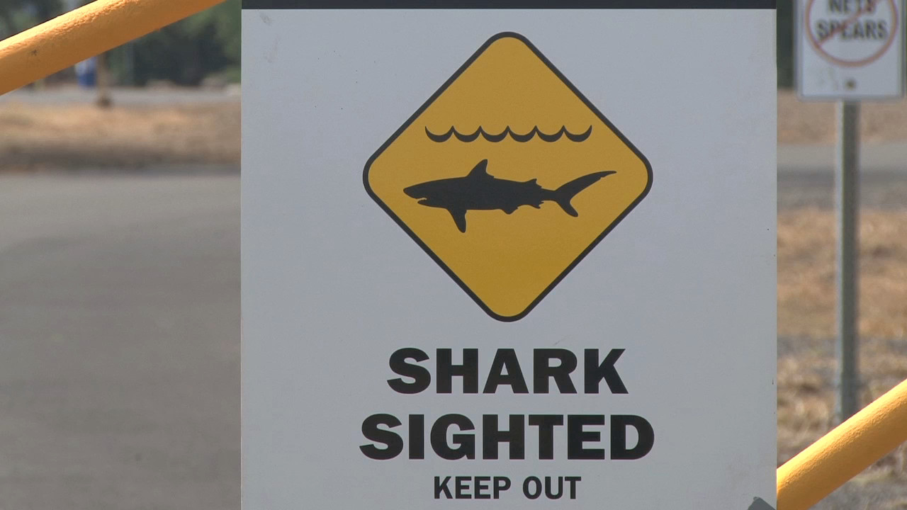 VIDEO: Shark Attack Closes Hapuna, Kansas Man Hospitalized