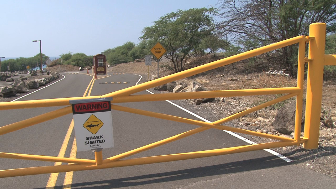 Hapuna Closed Another Day Due To Shark Attack