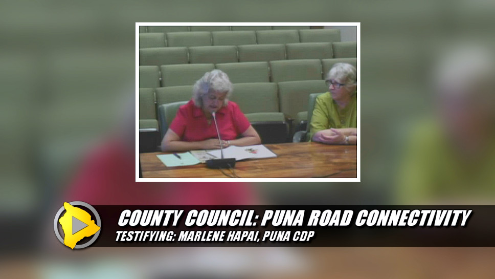 VIDEO: Ad Hoc Committee On Puna Road Connectivity