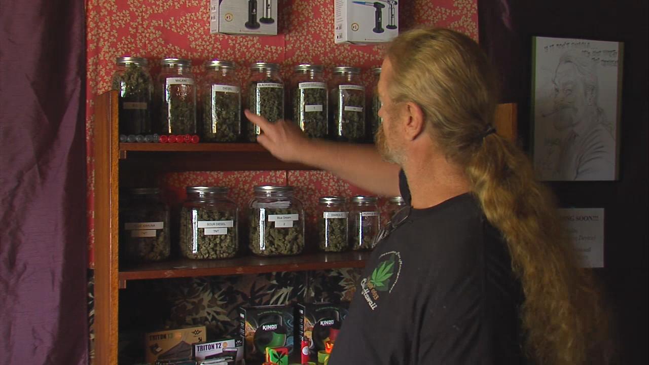 Puna Cannabis Pu'uhonua Busted By Police