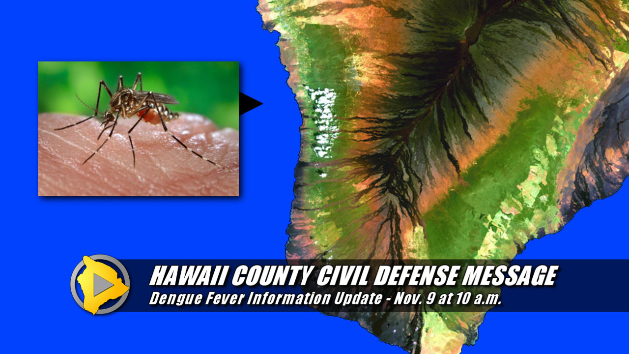 Hawaii Dengue Fever Cases Rise To 27, Meeting Tonight in Kona