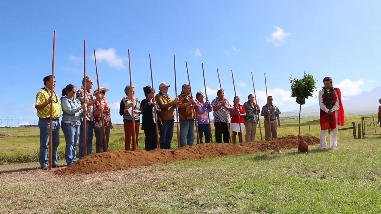 VIDEO: Waimea District Park Breaks Ground