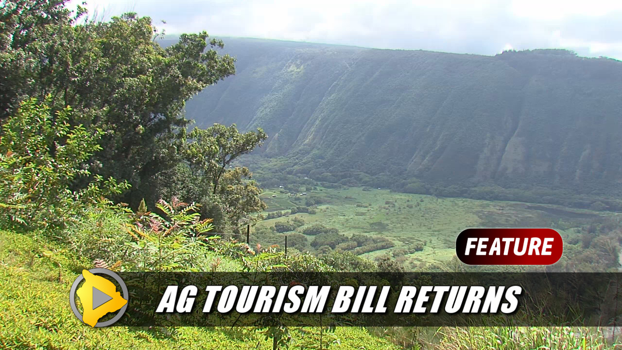 VIDEO: Hawaii Council Takes On Ag Tourism, Again