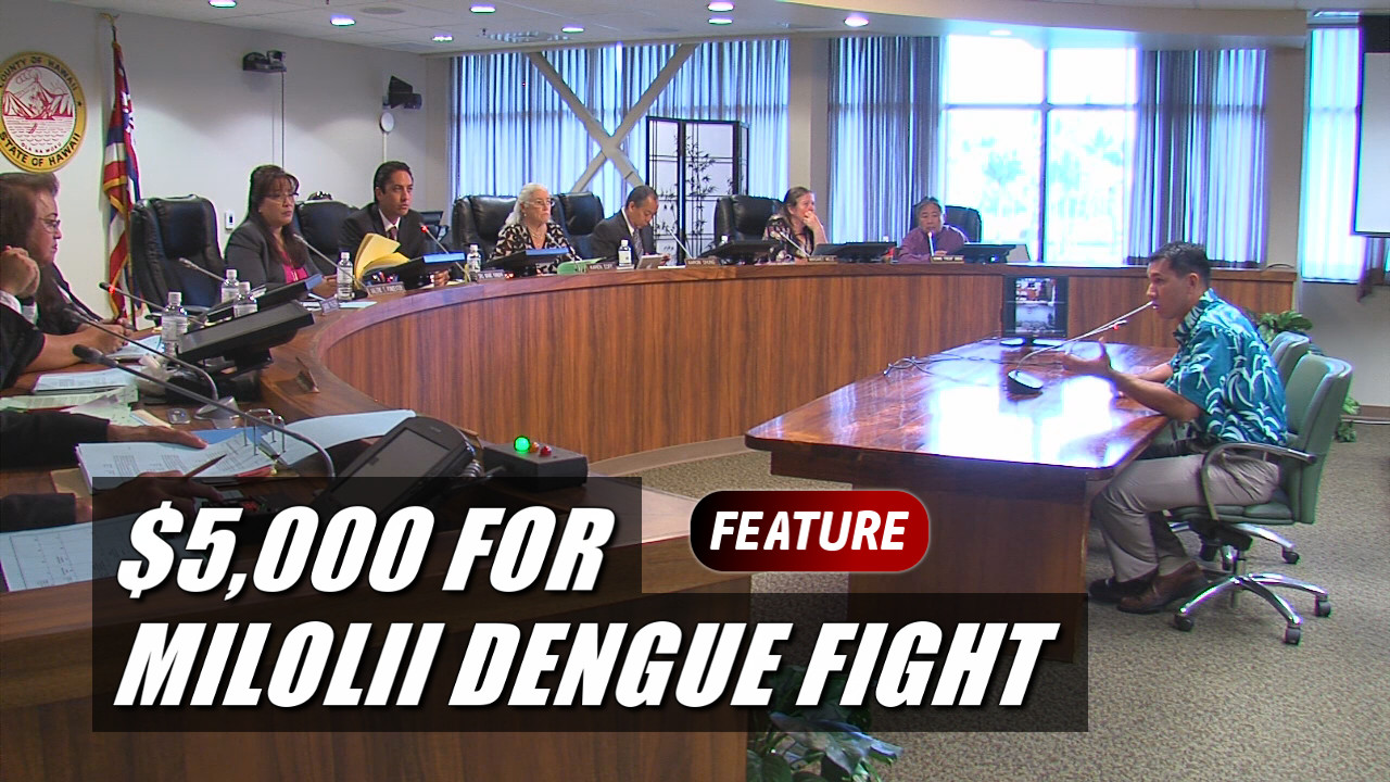 VIDEO: Council Grants $5K For Milolii Dengue Fever Fight