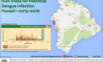 Dengue Fever Update: Risk Reduced In South Kona