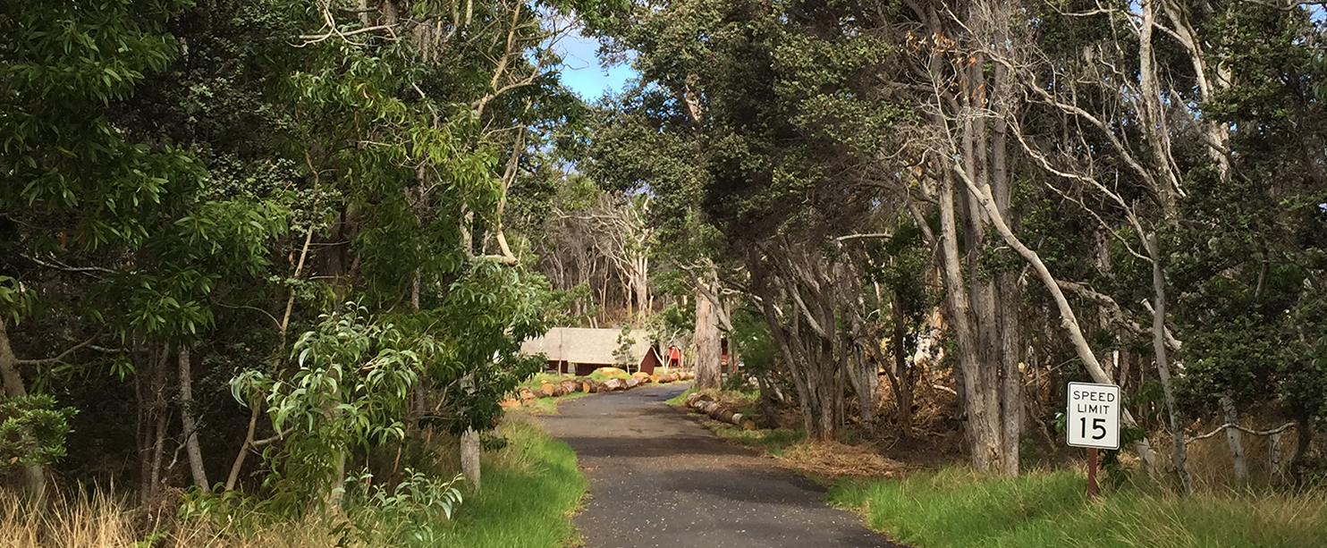 Volcano Park's Namakanipaio Campground To Reopen