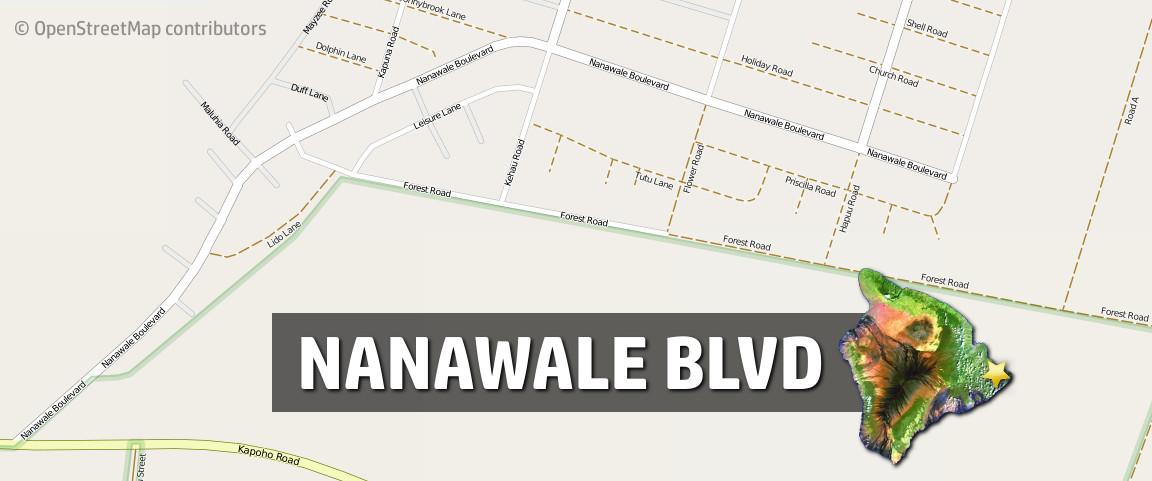Female Found Dead In Nanawale Bushes After Car Crash