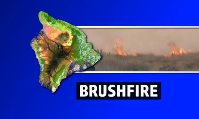 Brush Fire Closes Highway 11