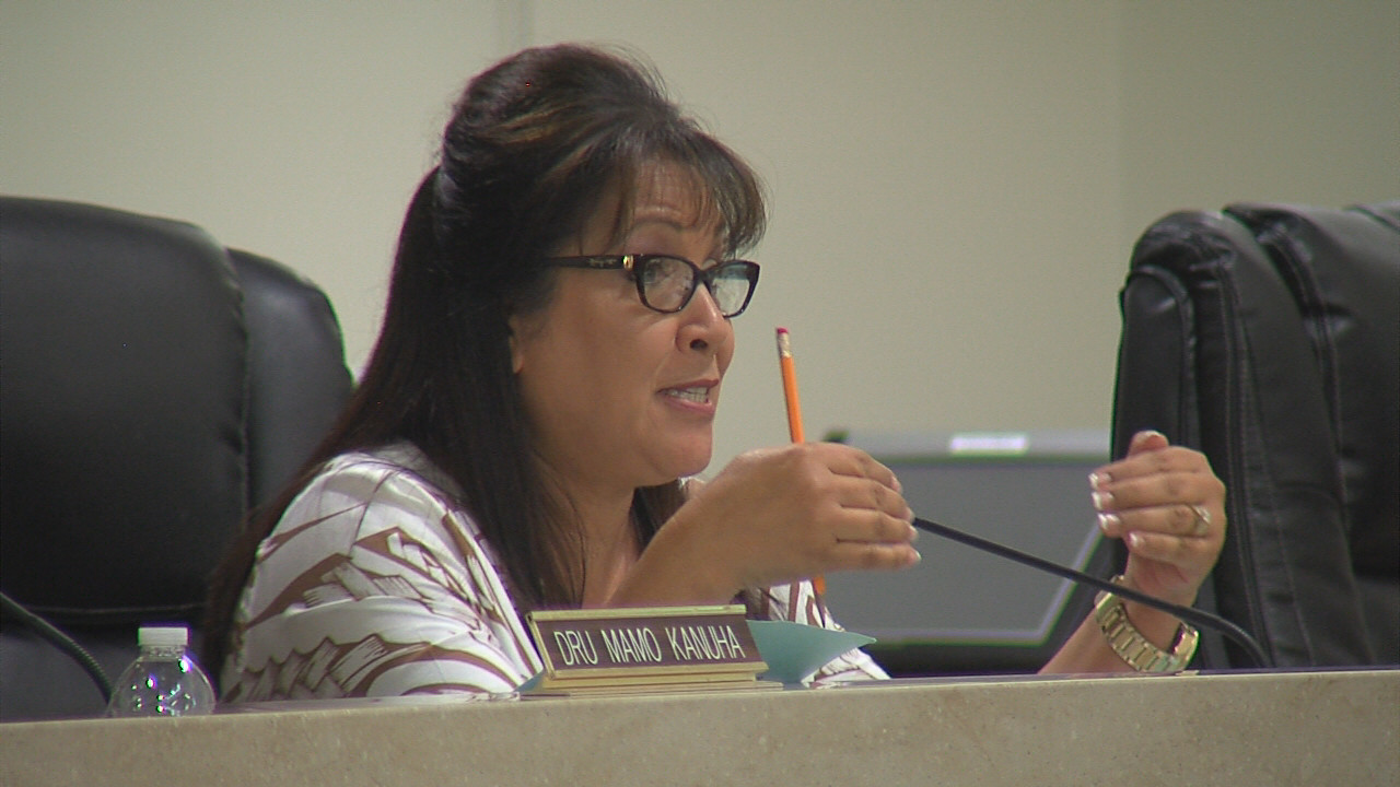 VIDEO: Council Authorizes Hakalau Point Negotiation