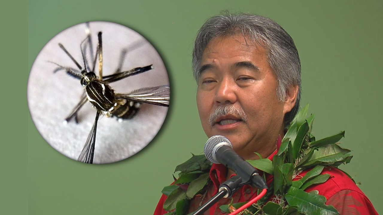 VIDEO: Governor Ige Gives Mosquito Fight Update