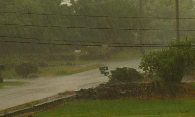 VIDEO: Rain From Hurricane Madeline Arrives
