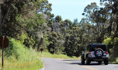 State, National Parks Adjust To Lester Forecast