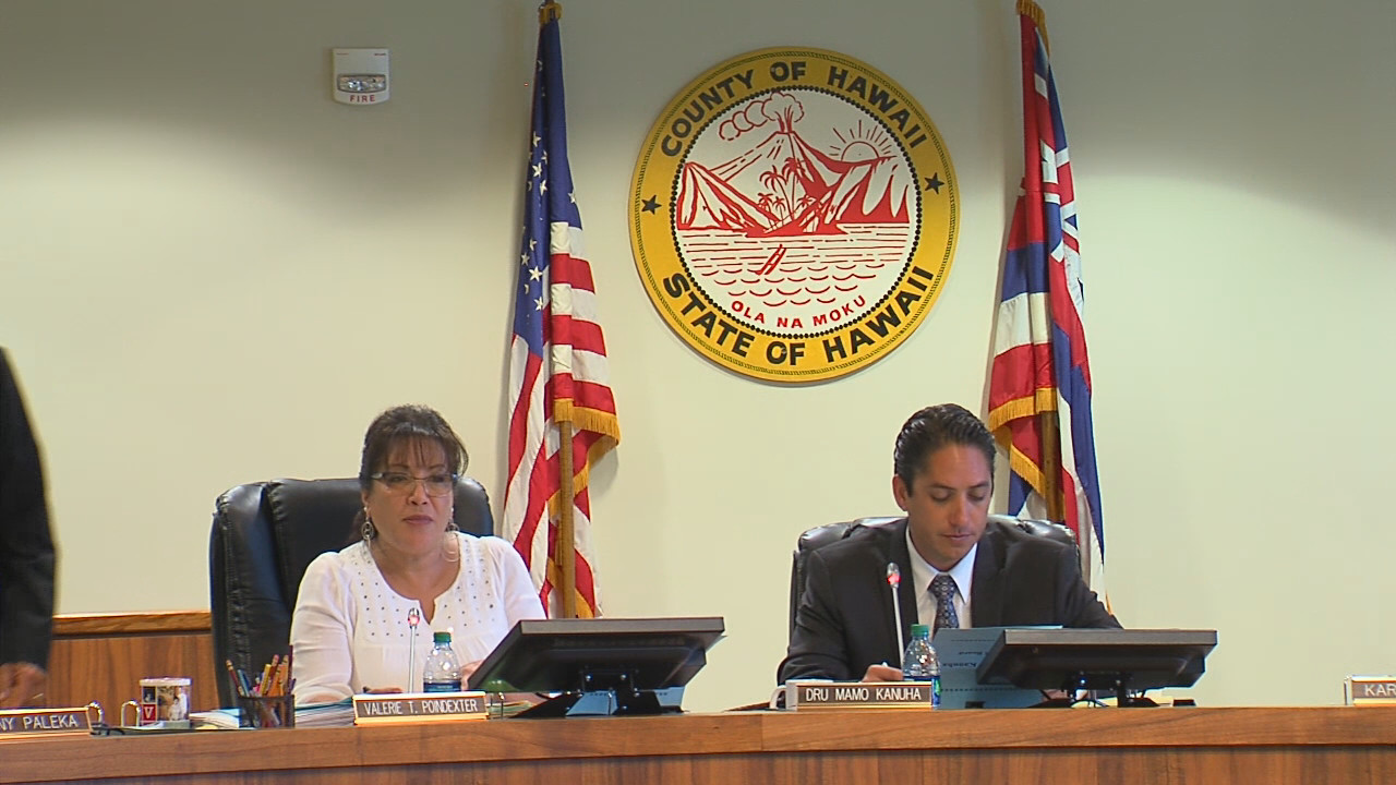 VIDEO: Hawaii County Council Supports CEDAW