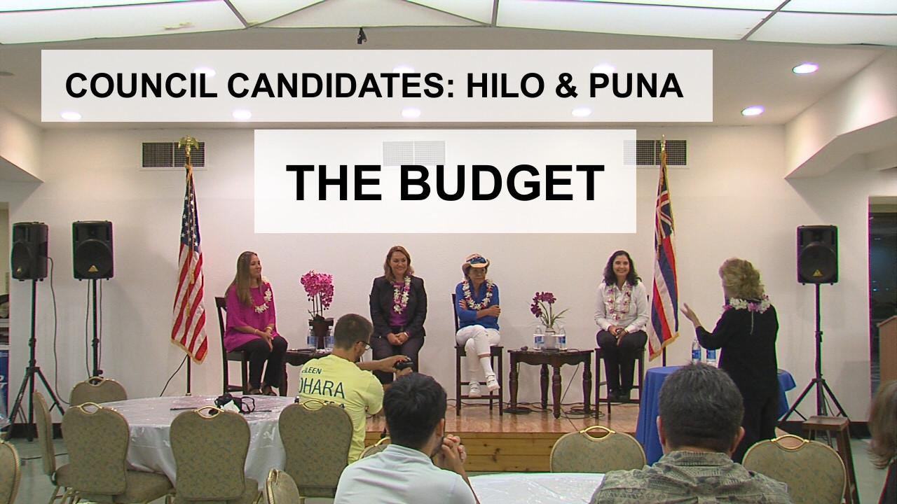 VIDEO: Budget – Hilo, Puna Council Candidates (12/14)