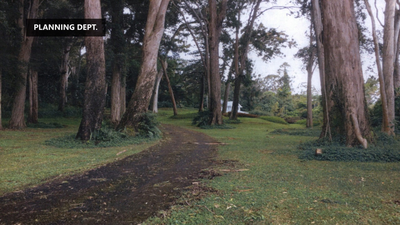 VIDEO: Trees Of Kukuihaele Lands Down-Zoned