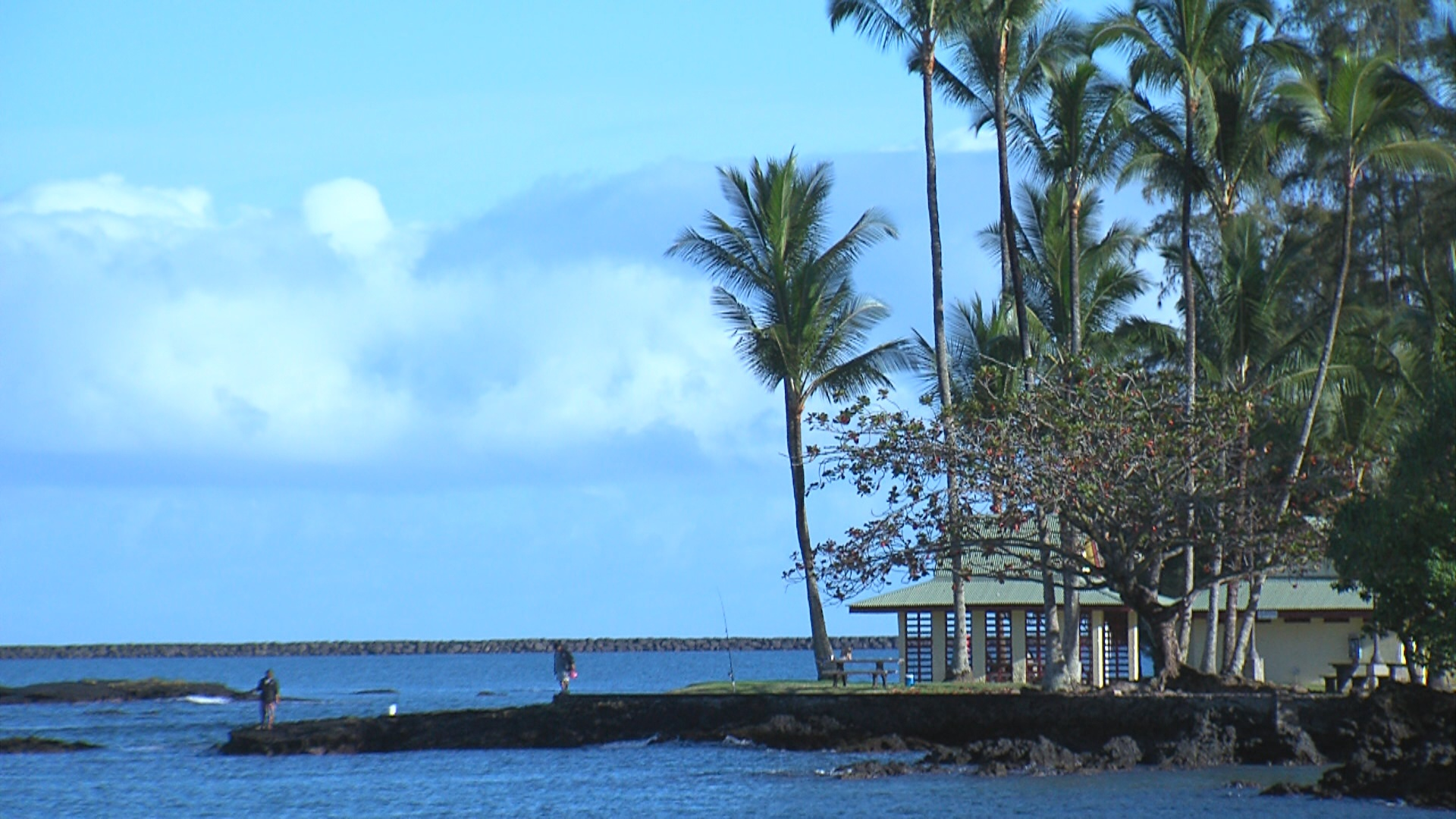 VIDEO: Waiakea Peninsula Redevelopment District Bill Advances