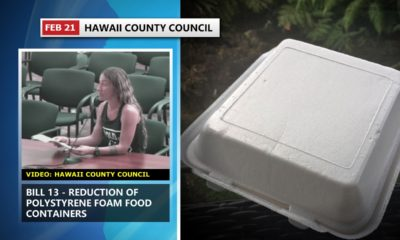 VIDEO: Public Pushes Council To Advance Styrofoam Bill
