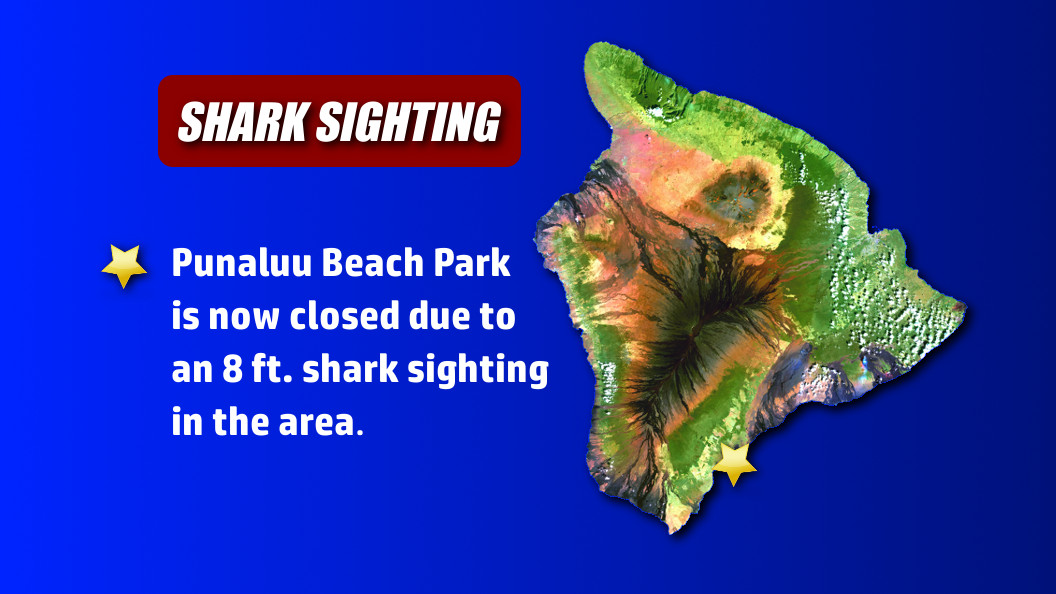Shark Sighting Closes Punaluu Beach Park