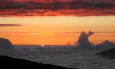 Unprecedented Carbon Dioxide Rise Continues, Scientists Report