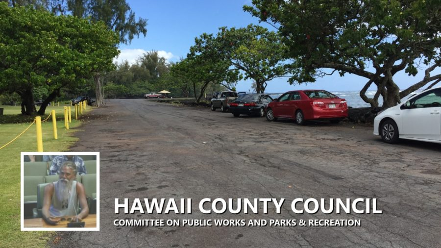 VIDEO: Drinking Ban Considered At Kealoha Beach Park