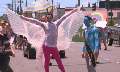 VIDEO: Hilo Pride Parade Hits Downtown