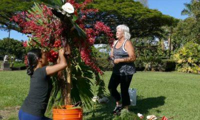 VIDEO: Liliuokalani Gardens Gets Floral Makeover