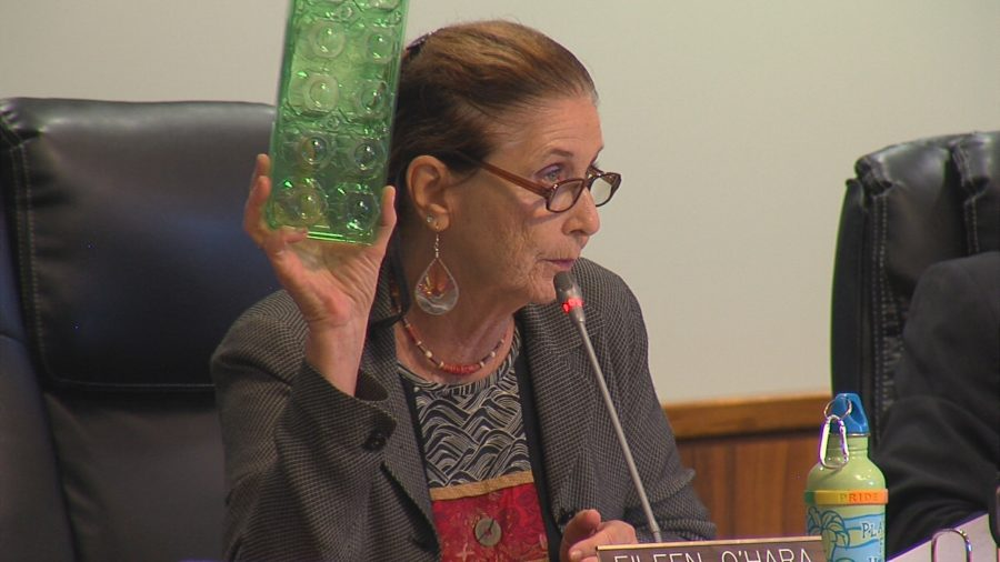 VIDEO: Styrofoam Food Container Ban Advanced By Council