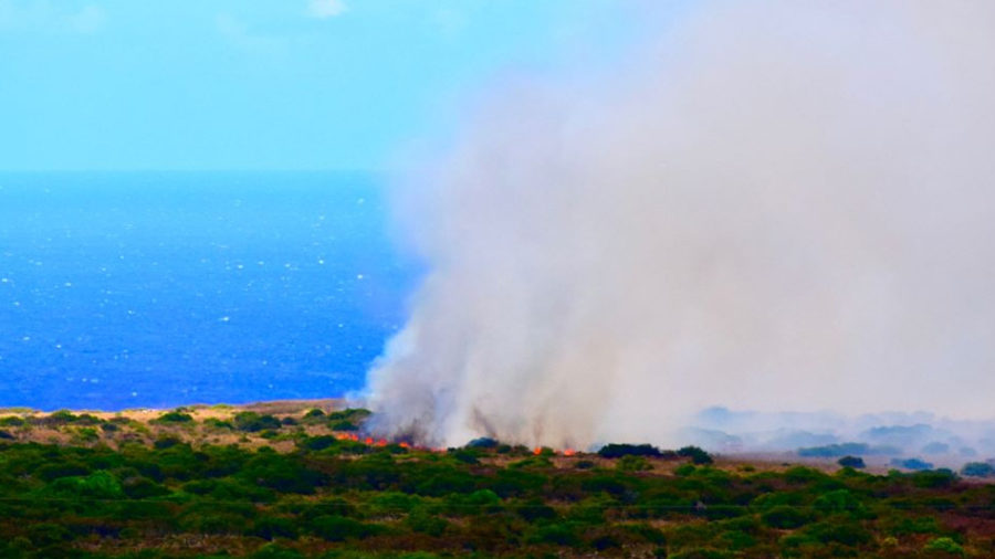 Ka'u Brushfire Grows To 1,600 Acres