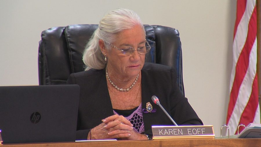 VIDEO: Hawaii Water Supply Audit Request Approved By Council