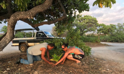 VIDEO: Kohanaiki Ohana Presents On O'oma Beach Stewardship