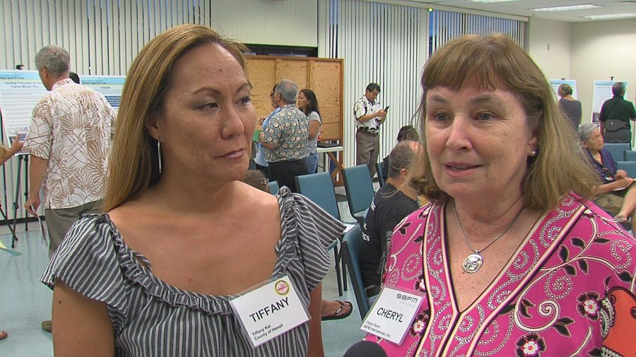 VIDEO: Mass Transit Master Plan Meeting Held In Hilo