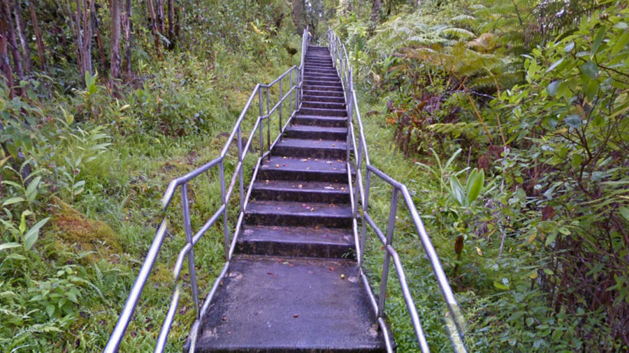 Akaka Falls State Park Trail Reopens After Repairs