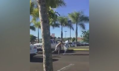 VIDEO: Altercation In Hilo Courthouse Parking Lot Recorded