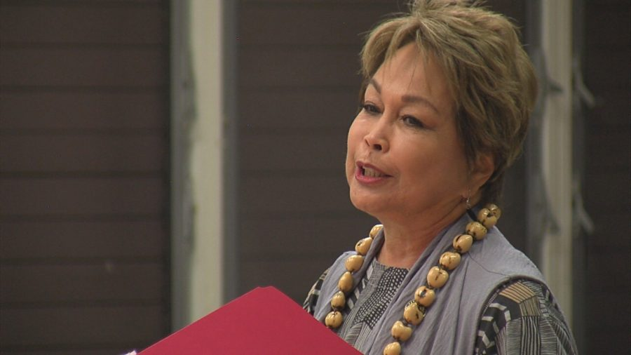 FULL VIDEO: Waimea Community Association Town Meeting