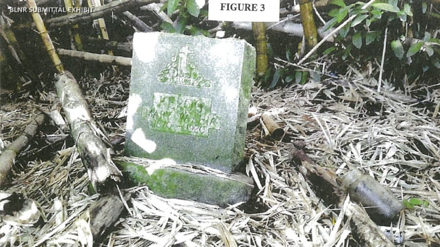 VIDEO: Damaged Grave Stones Action Before BLNR