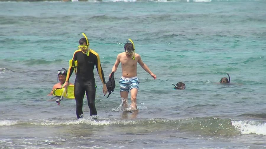 Coral Spawning Event To Close Kahalu'u Beach Park