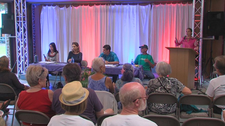VIDEO: 2 Of These 4 Candidates Will Represent Puna On County Council